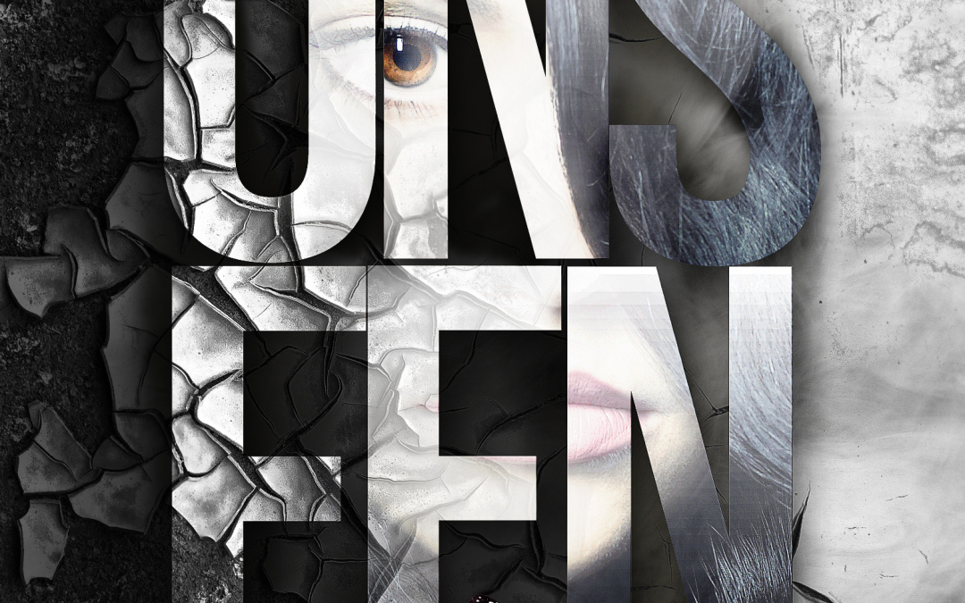 Unseen on ALL platforms and blog tour