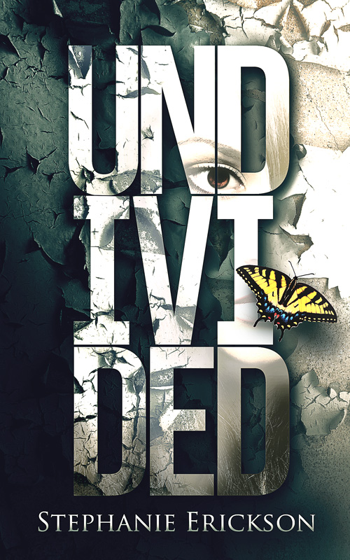 Undivided by Stephanie Erickson