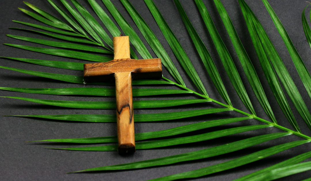 Palm Sunday: A Day of Hope and Expectation